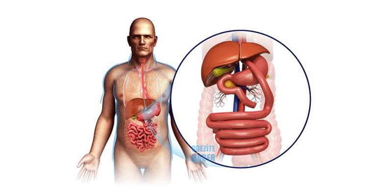 Roux-en Y Gastrik Bypass ve Mini Gastik Bypass Ameliyatı Farkları