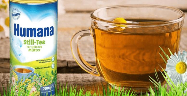 Humana Still Tea Faydaları Nelerdir, İçeriği Nedir, Ne İşe Yarar?