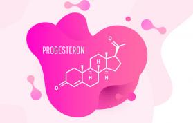 Progesteron Hormonu Artıran Bitkiler ve Besinler Nelerdir?