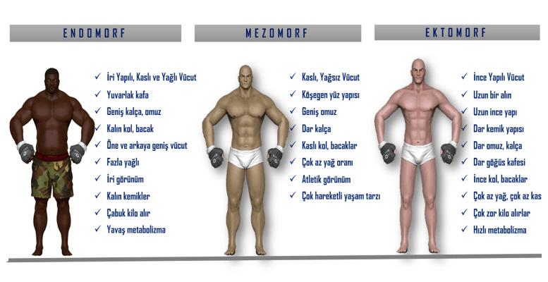 Kaç Vücut Tipi Vardır?