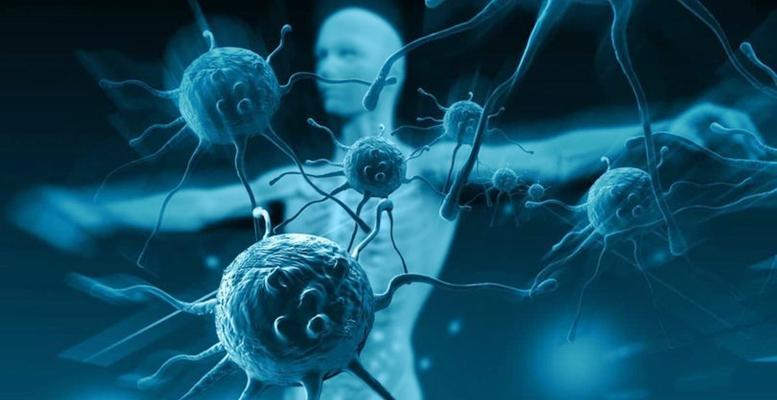 Bağışıklık Sistemi Nasıl Güçlenir? Bağışıklığı Ne Güçlendirir?