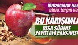 Elma, Tarçın, Limon Detoksu Nedir, Nasıl Yapılır?